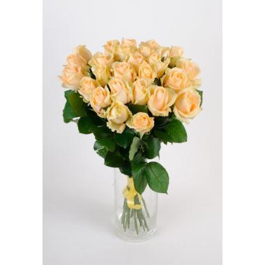 роза 60 см