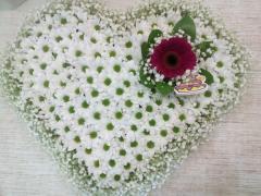 Сердце из ромашек №01